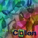 Lámina hojas de colores
