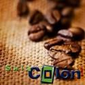 Lámina de café