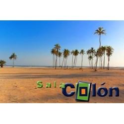 Lámina palmeras playa
